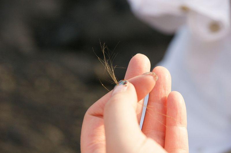 peles-hair-8