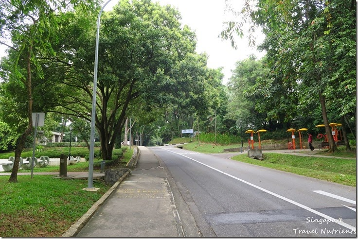 新加坡花柏山 (57)