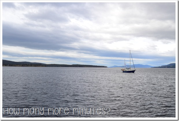 Catching the Ferry to Bruny Island ~ How Many More Minutes?