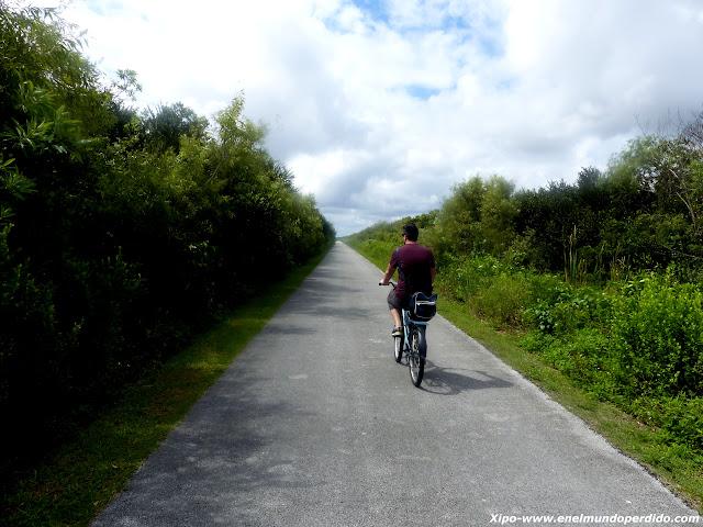 bicicleta-en-los-everglades.JPG