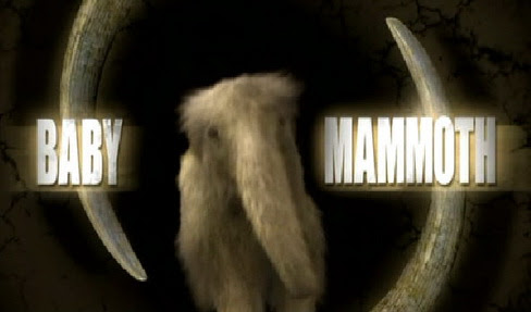 Wszystko o mamutach / The Baby Mammoth (2009) PL.TVRip.XviD / Lektor PL