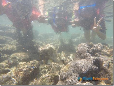 Snorkeling Pantai Nglambor Kisah Foto Blog03
