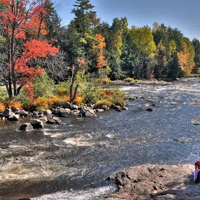 Rivière du Nord by Paul Bélair - Nature Up Close Water ( automne, d90, rivières, érable, couleurs, bwcautumn )