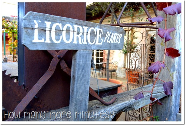 Junee Licorice & Chocolate Factory | How Many More Minutes?