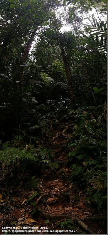 Bobbin Bobbin Falls climb pano
