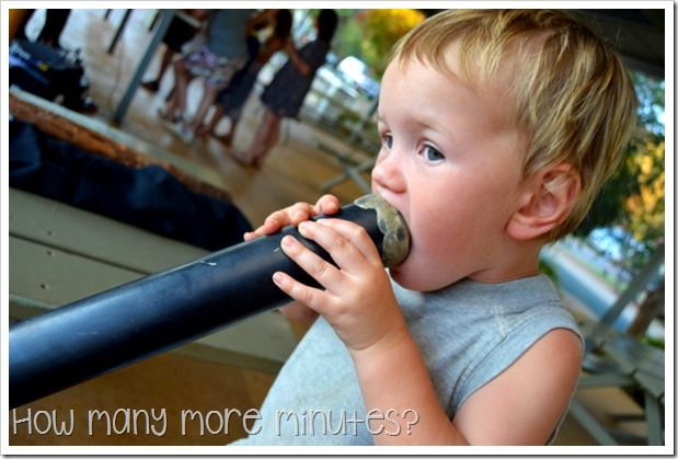 A Surprise Didgeridoo Performance | How Many More Minutes?
