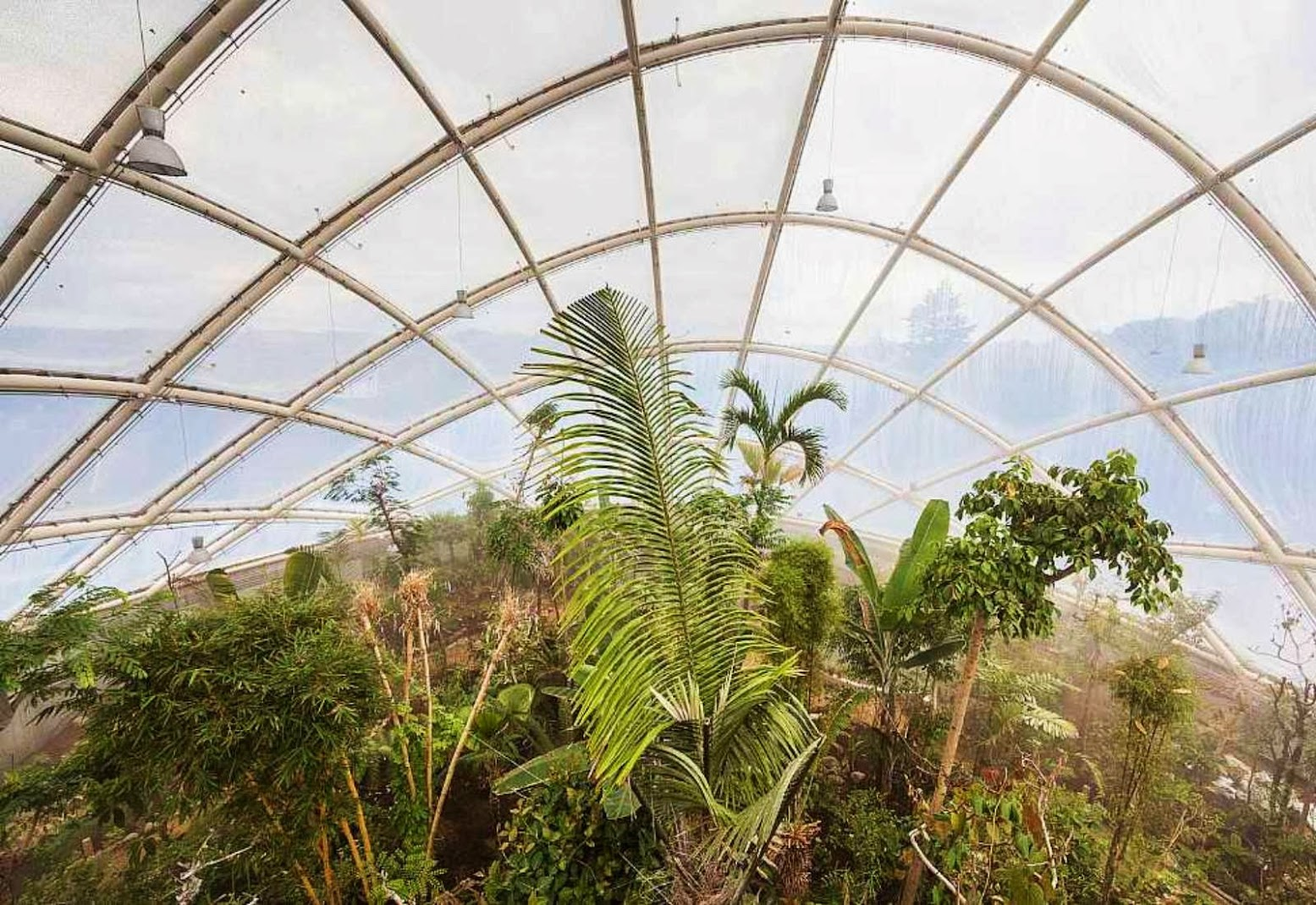 11-Greenhouse-in-the-Botanic-Garden-by-C.F.-Møller-Architects
