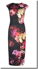 Ted Baker Cascading Floral print dress