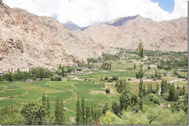 Ladakh71