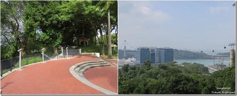 新加坡花柏山 (103)