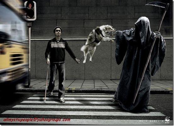 imagenes de miedo (1)
