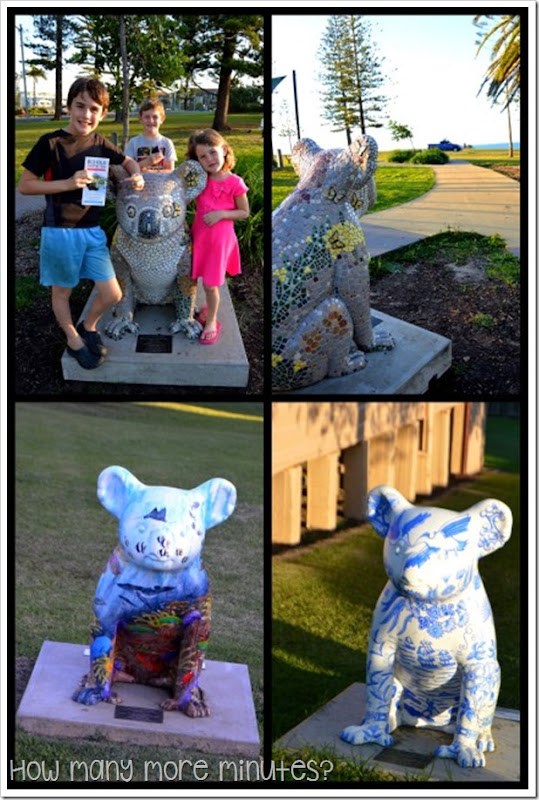 Hello Koalas! in Port Macquarie | How Many More MInutes?