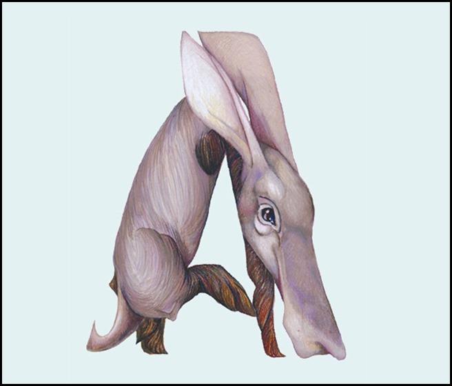 Casey Girard  - Aardvark