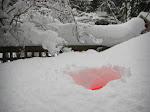 Weihnachten IM Schnee!