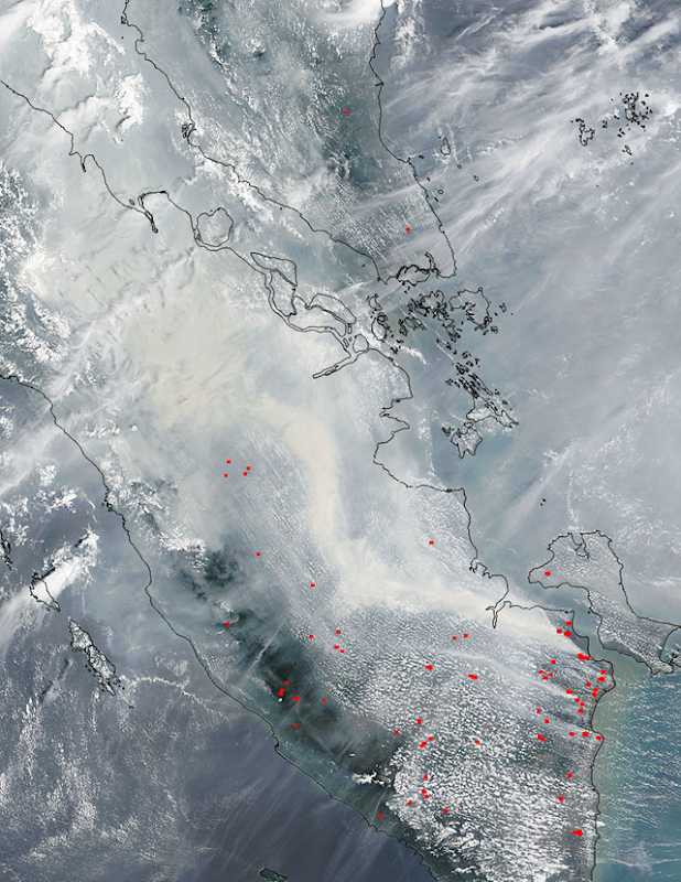 Satellite view of smoke and fires in southern Sumatra, 4 October 2015. Photo: NASA Aqua / MODIS
