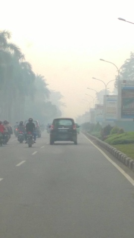 Road in Borneo, Indonesia, Haze 2015