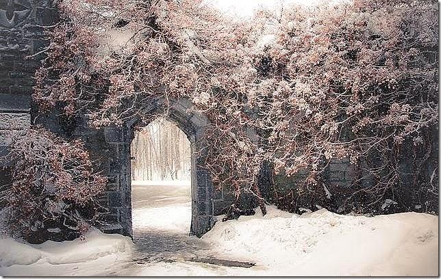 Snowy Archway