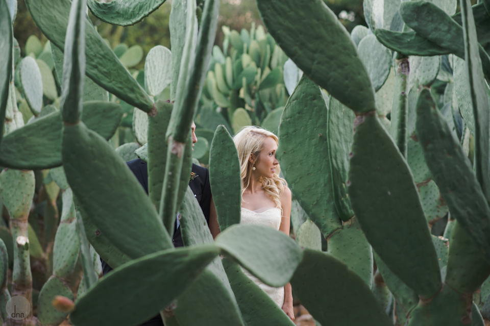 Paige and Ty wedding Babylonstoren South Africa shot by dna photographers 313.jpg