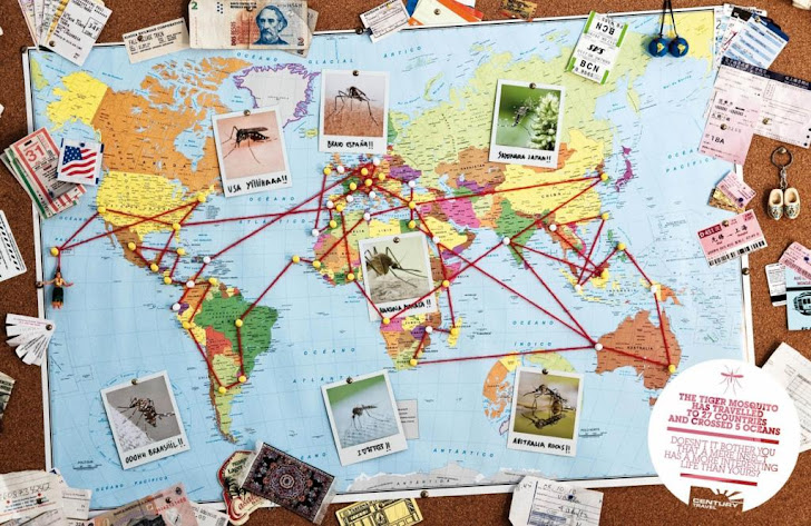 Century Travel Agency