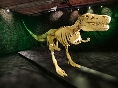 2015.05.17-095 Dinosaur