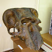 череп мамонта.JPG