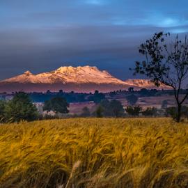Field and snowy Volcano by Cristobal Garciaferro Rubio - Landscapes Prairies, Meadows & Fields ( sleeping woman, la mujer dormida, volcano, mexico, puebla, iztaccihuatl )