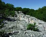 Wolf Rock, Catoctin Mountain Park, near Thurmont, Maryland.