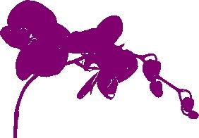 Orchid - http://www.wedding-invitation-ideas.com
