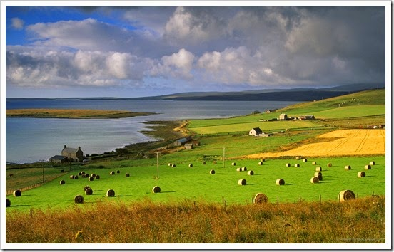 beautiful-farms-by-the-sea-coast-293815