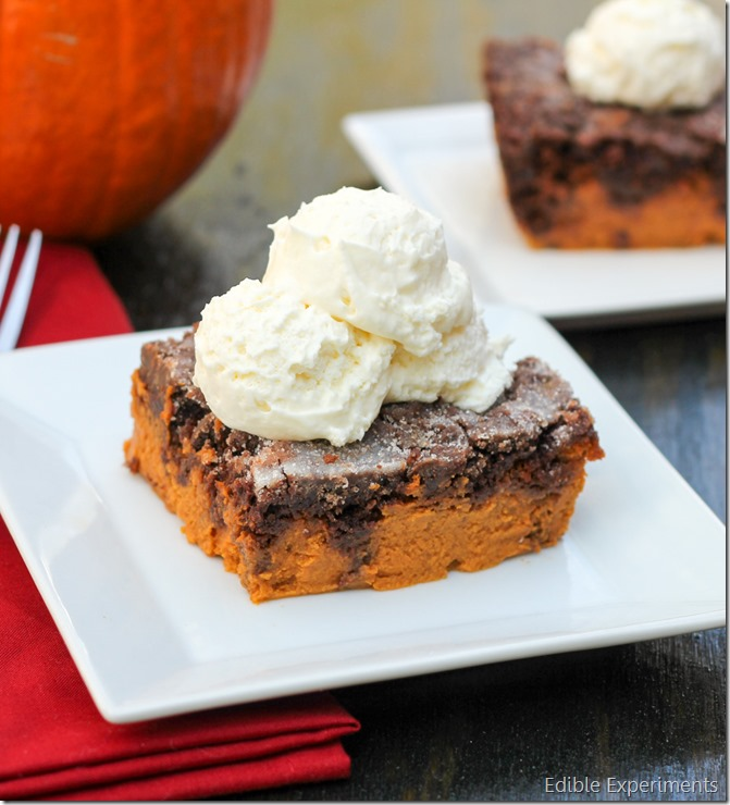 Chocolate Pumpkin Dump Cake from Edible Experiments (12 of 1)