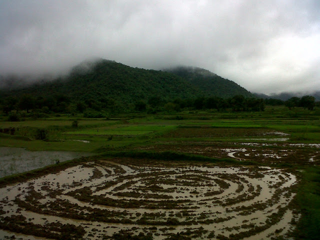 Rural landscape of Pradhanpat in Orissa
