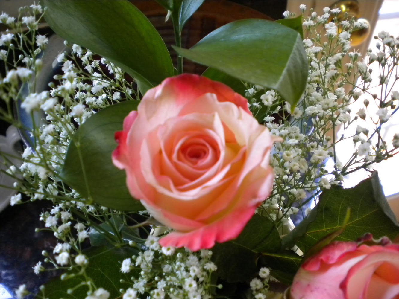 Roses on my kitchen table.