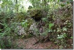 In sinkhole 2