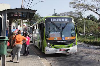 Ônibus com novas cores