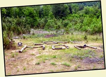 01b2 - Lake Powhatan - View Behind Site 46