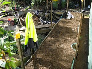wicking ready to plant.JPG