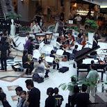 orchestra at the mall in Yokohama, Tokyo, Japan