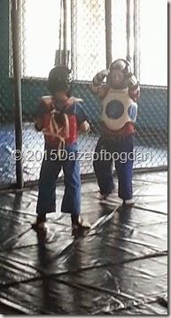 boys sparring