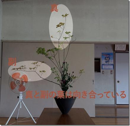 【生花正風体】アブラツツジ、キク【葉の向き】