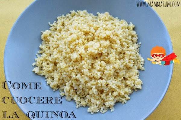 Mammarum come cuocere la quinoa for Cucinare quinoa