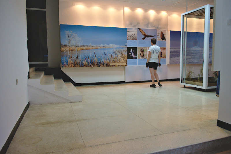 Vizitand muzeul
