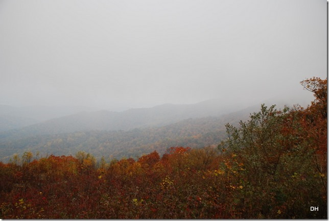 10-23-15 A Skyline Drive Shenandoah NP (63)