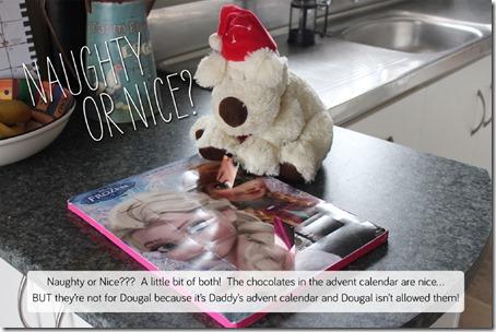 Dougal_1