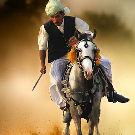 Gullu by Abdul Rehman - Sports & Fitness Other Sports ( sand, natural light, desert, horse, rural sport, sport, dangerous, horseback, pakistan, adventure, thrilling, dust, tent,  )