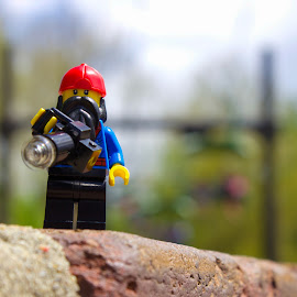 Looking for Photo Ops by Gerald Glaza - Artistic Objects Toys ( henry doorly zoo, toys, toy photography, toys are real, lego )