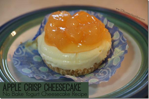 Apple Crips Cheesecake No Bake Yogurt Cheesecake Recipe