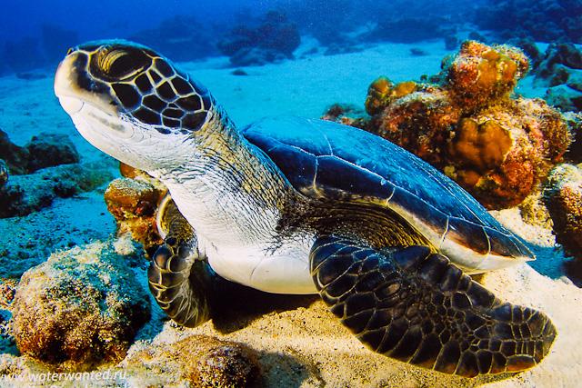 АртДонбасс фотовыставка Капля в море