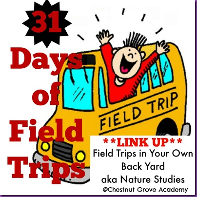 31 days of field trips5