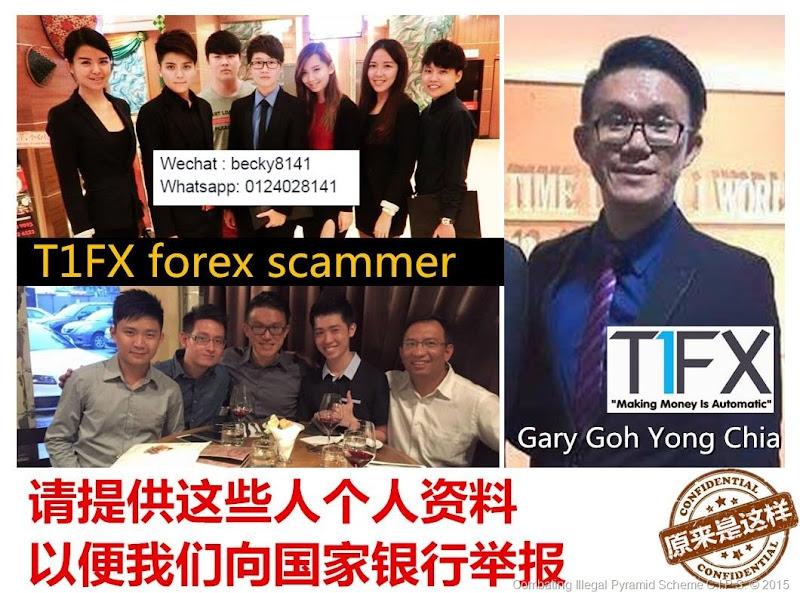 T1fx forex
