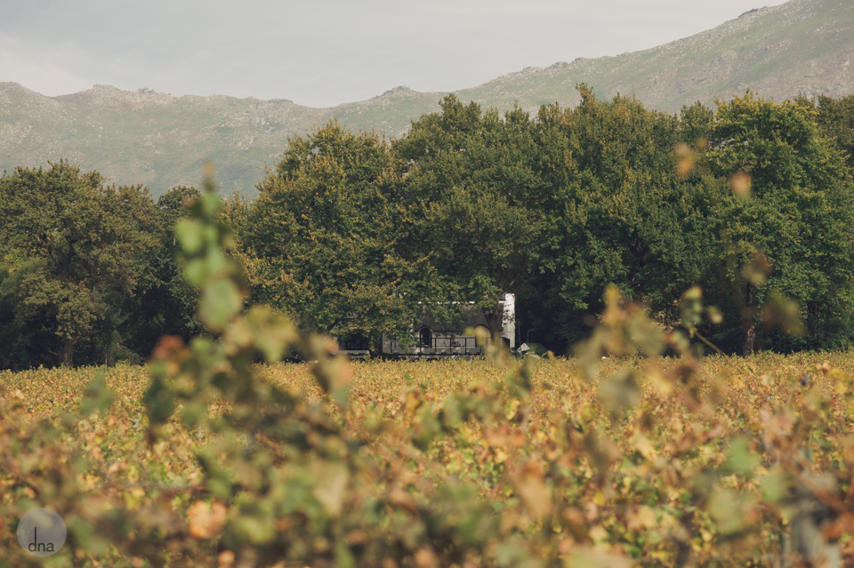 Ana and Dylan wedding Molenvliet Stellenbosch South Africa shot by dna photographers 0003.jpg